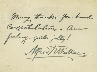 Wallace, correspondance, postcard, entomologist, naturalist, archives